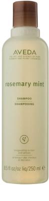 Aveda Rosemary Mint šampon pro jemné až normální vlasy