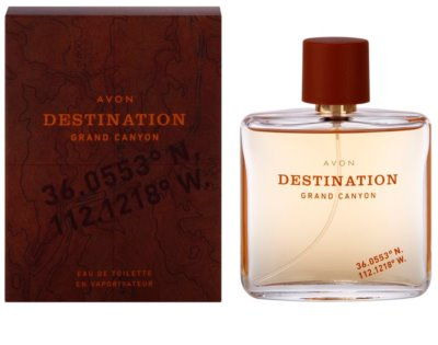 Avon Destination Grand Canyon Eau de Toilette für Herren