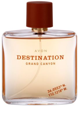 Avon Destination Grand Canyon Eau de Toilette für Herren 2