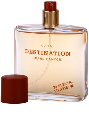 Avon Destination Grand Canyon Eau de Toilette für Herren 3
