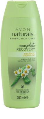 Avon Naturals Herbal Regenierendes Shampoo mit Kamille