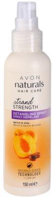 Avon Naturals Hair Care Haarspray für die leichte Kämmbarkeit des Haares 1