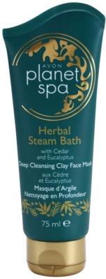 Avon Planet Spa Herbal Steam Bath tiefenwirksame reinigende Tonerde-Gesichtsmaske mit Zeder und Eukalyptus