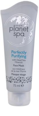 Avon Planet Spa Perfectly Purifying почистваща маска  с минерали от Мъртво море