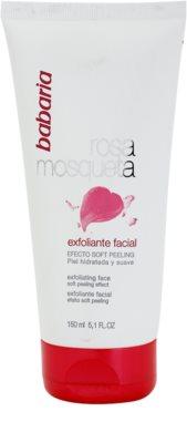 Babaria Rosa Mosqueta exfoliante facial suave con extracto de rosal silvestre