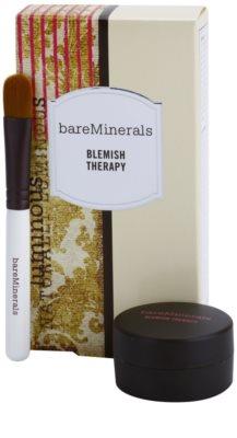 BareMinerals Treat korrekciós púder a bőr tökéletlenségei ellen ecsettel 1