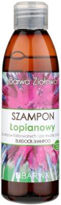 Barwa Herbal Burdock šampon pro barvené a poškozené vlasy
