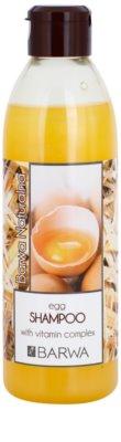Barwa Natural Egg sampon pentru regenerare pentru par deteriorat