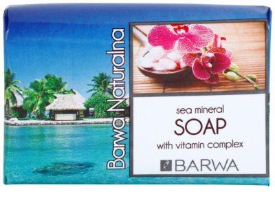 Barwa Natural Sea Mineral tuhé mydlo s vitamínmi