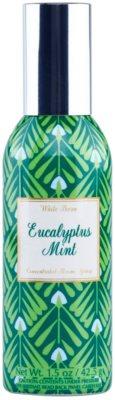 Bath & Body Works Eucalyptus Mint odświeżacz w aerozolu