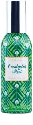 Bath & Body Works Eucalyptus Mint spray para o lar