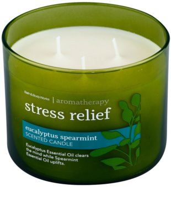 Bath & Body Works Eucalyptus Spearmint vonná sviečka 1