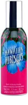 Bath & Body Works Hawaiian Hibiscus Room Spray
