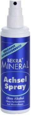 Bekra Mineral Underarm Spray minerálny dezodorant v spreji s aloe vera 1