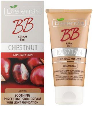 Bielenda Chestnut beruhigende BB Creme für Haut mit geweiteten Äderchen 1