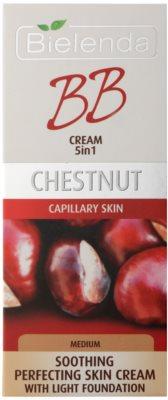 Bielenda Chestnut beruhigende BB Creme für Haut mit geweiteten Äderchen 2