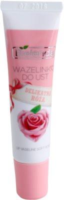Bielenda Delicate Rose vaselina pe/pentru buze