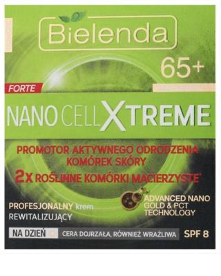 Bielenda Nano Cell Xtreme 65+ денний відновлюючий крем SPF 8 2