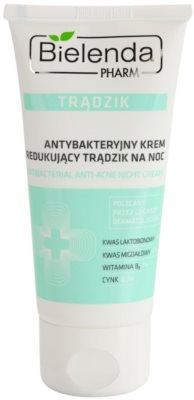 Bielenda Pharm Acne creme de noite contra imperfeições de pele acneica