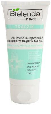 Bielenda Pharm Acne Nachtcreme für Unvollkommenheiten wegen Akne Haut
