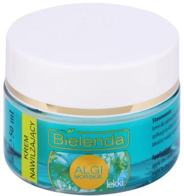 Bielenda Sea Algae Moisturizing creme geloso suave hidratante