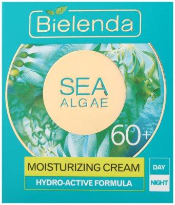 Bielenda Sea Algae Moisturizing Creme gegen tiefe Falten 60+ 2