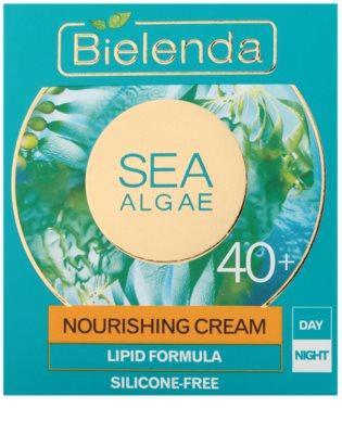 Bielenda Sea Algae Nourishing 40+ 2