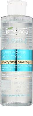 Bielenda Skin Clinic Professional Moisturizing tonic activ cu efect de hidratare 1