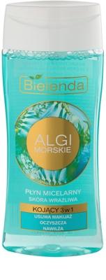 Bielenda Sea Algae Soothing mizellarwasser zum Abschminken 3 in1