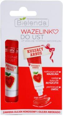 Bielenda Tempting Watermelon Nude Matt Vaseline für Lippen 1