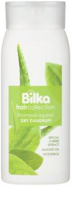 Bilka Hair Collection szampon przeciwłupieżowy