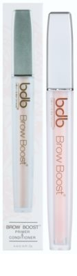 Billion Dollar Brows Color & Control prebase y acondicionador para cejas 2 en 1 2