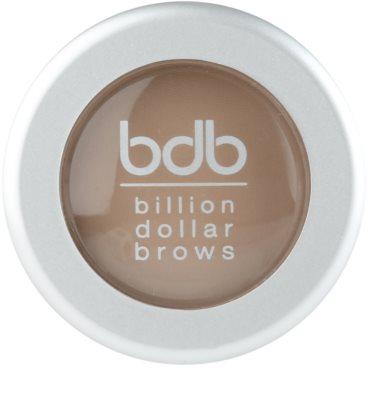 Billion Dollar Brows Color & Control sombra en polvo de cejas 1