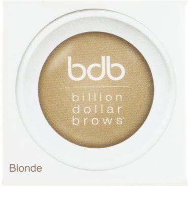 Billion Dollar Brows Color & Control púderező festék szemöldökre 2
