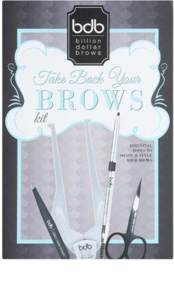 Billion Dollar Brows Take Back Your Brow set za popolne obrvi 6