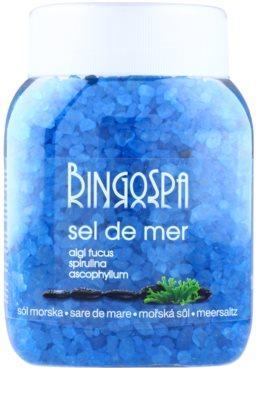 BingoSpa Algae Fucus & Spirulina & Ascophyllum morská soľ do kúpeľa