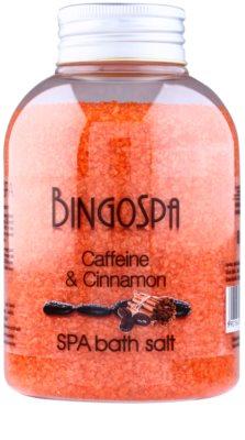 BingoSpa Caffeine & Cinnamon sales de baño