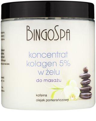 BingoSpa Collagen gelový masážní koncentrát