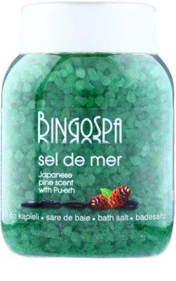 BingoSpa Japanese Pine Scent & Pu-erh sais do mar para banho
