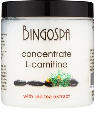 BingoSpa L- Carnitine concentrado tonificante