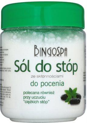 BingoSpa Mint Sare de baie pentru picioare predispuse la transpirație