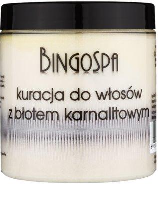 BingoSpa Mud Haarmaske mit Carnallitmineralschlamm