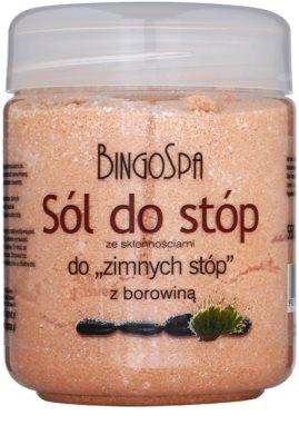 BingoSpa Peat soľ do kúpeľa proti pocitu studených nôh