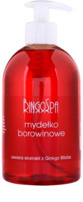 BingoSpa Peat sabão líquido com extrato de Ginkgo Biloba