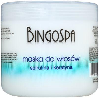BingoSpa Spirulina & Keratin Maske für feines und brüchiges Haar