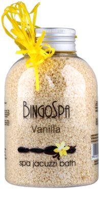 BingoSpa Vanilla minerální lázeň do vířivky