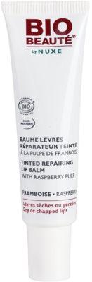 Bio Beauté by Nuxe Lips bálsamo regenerador para lábios  com polpa de framboesa