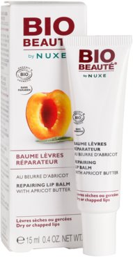 Bio Beauté by Nuxe Lips regeneracijski balzam za ustnice z mareličnim maslom 1