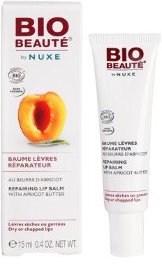 Bio Beauté by Nuxe Lips regenerační balzám na rty s meruňkovým máslem 2