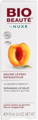 Bio Beauté by Nuxe Lips regenerační balzám na rty s meruňkovým máslem 3